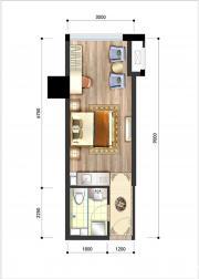 呈泰双子座A41室1厅36.43㎡