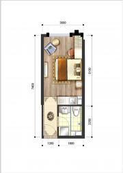 呈泰双子座A51室1厅30.32㎡