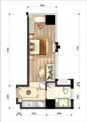 呈泰双子座A61室1厅45.54㎡