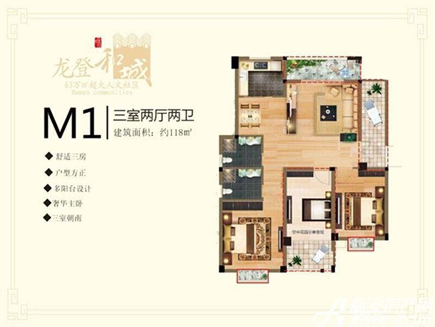 龙登和城M1户型3室2厅118平米