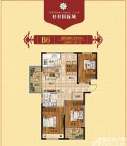 杉杉国际城B6户型图3室2厅115㎡