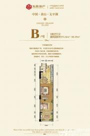 太平湖金龙岛B1室2厅80.29㎡