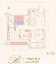 合肥云谷B1户型3室2厅102.4㎡
