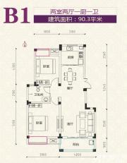 安粮学府花园B1户型2室2厅90.3㎡