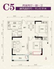 安粮学府花园C5户型2室2厅91.01㎡