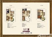 高速云水湾SP2户型4室2厅329.67㎡