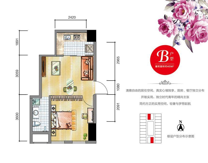 安通缘梦天地B户型1室1厅45平米