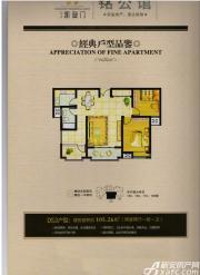 冠景凯旋门DS3户型2室2厅105.26㎡