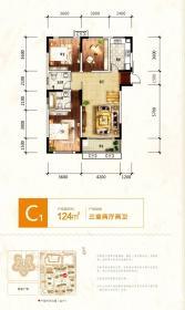 砀山奥园广场C13室2厅124㎡