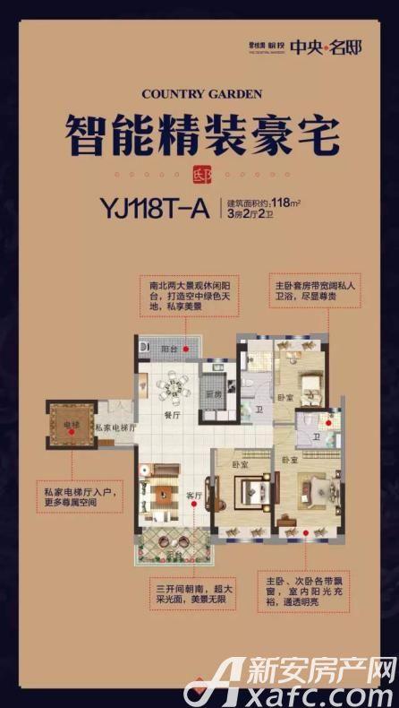 碧桂园皖投中央名邸YJ118T-A3室2厅118平米