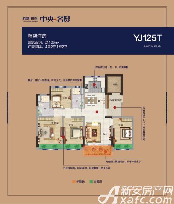 碧桂园皖投中央名邸YJ125T4室2厅125平米