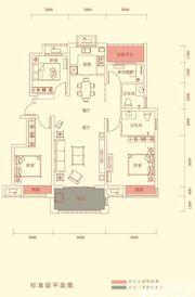 华盛南院Y2户型标准层平面图3室2厅116㎡