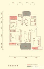 华盛南院Y3户型标准层平面图3室2厅98㎡