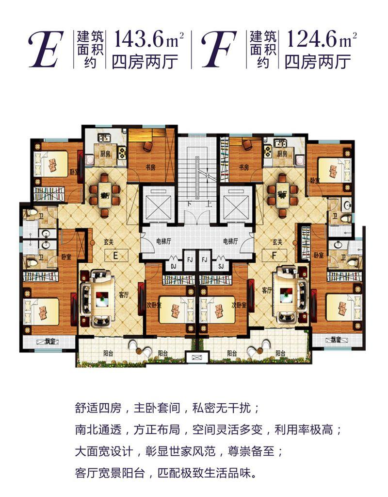 利辛佳源都市E/F户型4室2厅143.6平米