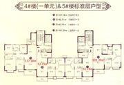 恒大滨江左岸4#5#户型3室2厅93㎡