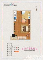 绿地微公馆23号户型1室1厅41.25㎡