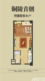 东方银座广场智能精装小户1室1厅53㎡