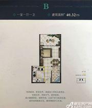 蝶尚雅居B1室1厅40.32㎡