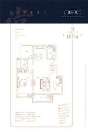 华尔儒林院B3室2厅107㎡