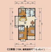 通成紫都19#C2户型3室2厅116.46㎡