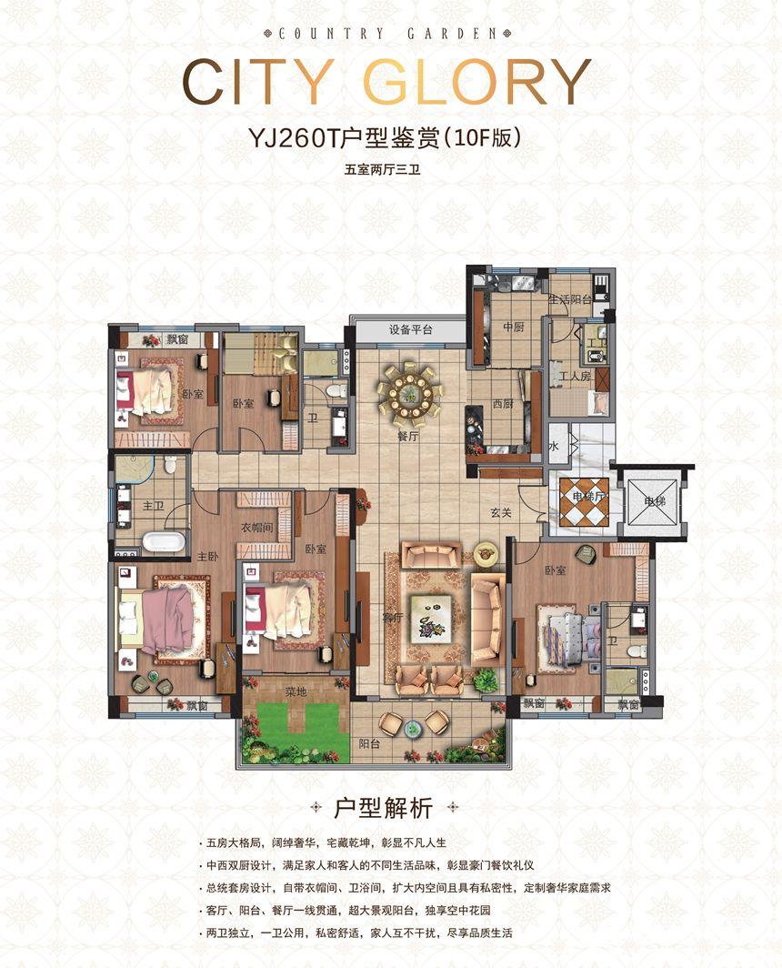碧桂园城市之光YJ260T(10F)5室2厅260平米