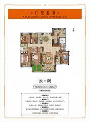 蚌埠碧桂园云阁5室2厅260㎡