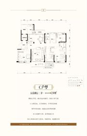 淮南碧桂园C户型5室2厅230㎡