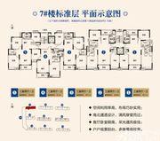 顺达金水湾7#标准层3室2厅130㎡