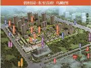 碧桂园·东至首府