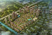 枫林天下·康城