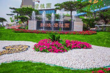 铜陵碧桂园