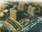明珠国际城