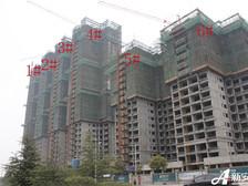 恒大绿洲恒大绿洲1#、2#、3#、4#已建至顶层,5#、6#已建至17层。
