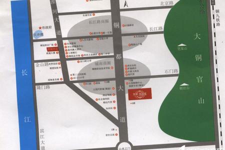 丽景花园城交通图