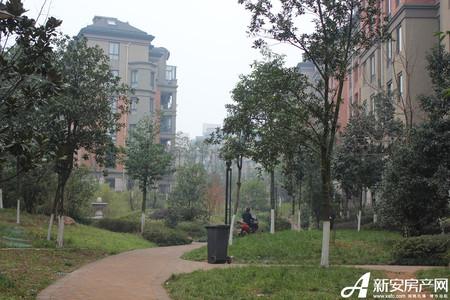 万泰汇富广场实景图