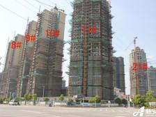 恒大绿洲恒大绿洲 8—11#项目进度(2012.4.23)