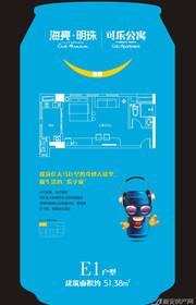 海亮明珠E1(公寓)户型1室1厅51.38㎡