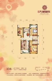 天湖国际10#C1户型3室2厅118.82㎡