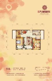 天湖国际9#C2户型3室2厅102.2㎡
