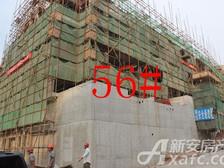淮北凤凰城9月56#工程进度.