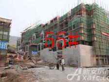 淮北凤凰城9月55#工程进度