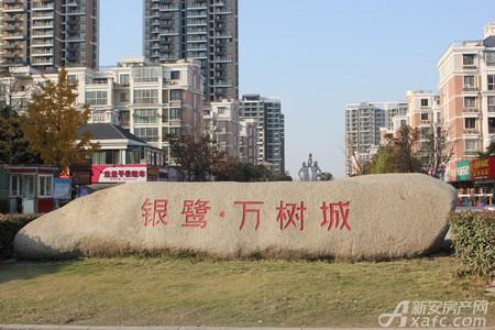 银鹭万树城实景图