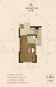 首府70年产权公寓E41室1厅48㎡