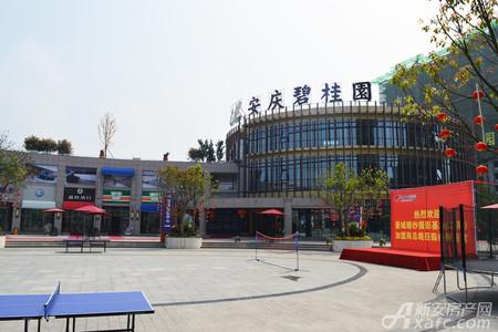 安庆碧桂园实景图