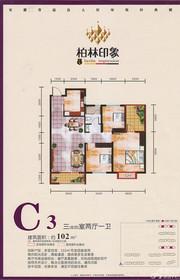 广元柏林印象C3户型3室2厅102㎡