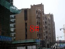 星洲国际城星洲国际城8#楼9月项目进度