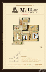 大成国际M户型3室2厅111.45㎡