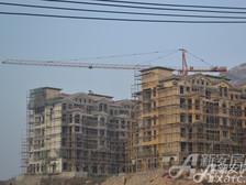 淮北凤凰城凤凰城11月项目进度G17封顶