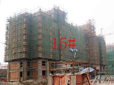 星洲国际城星洲国际城15#楼11月项目进度