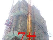 星洲国际城星洲国际城7#楼11月项目进度